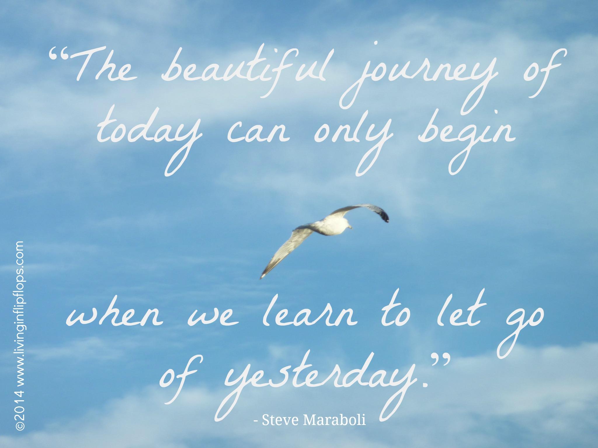 Inspirational Quote Steve Maraboli Living In Flip Flops